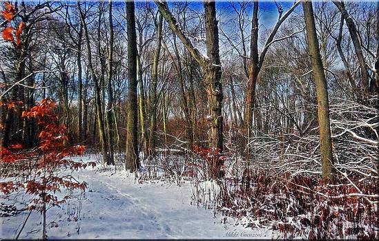 First Snow of 2015 by Mikki Cucuzzo