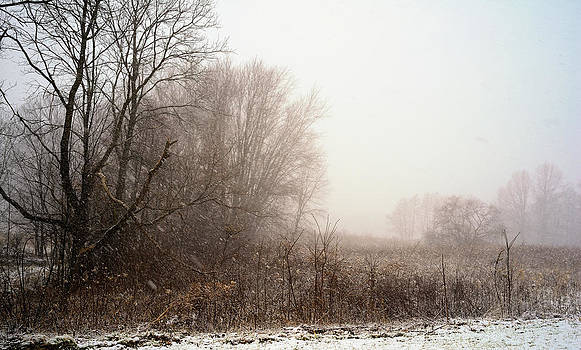 First snow of winter by Dick Wood