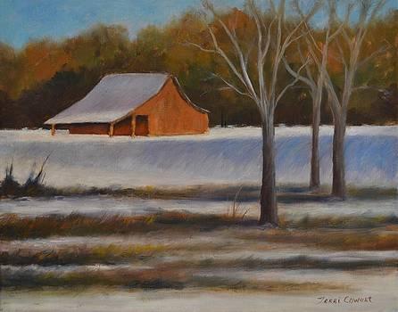 First Snow by Terri Cowart
