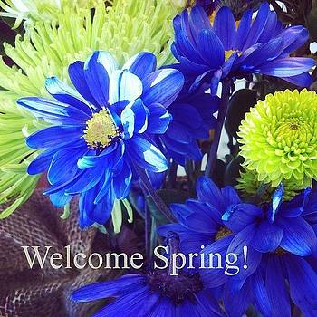 #firstdayofspring #springflowers by Artondra Hall