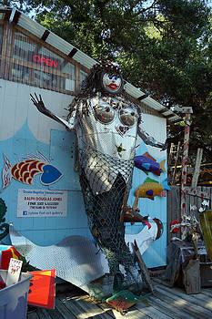 FISH ART GALLERY in Tybee Island by Kim Pate
