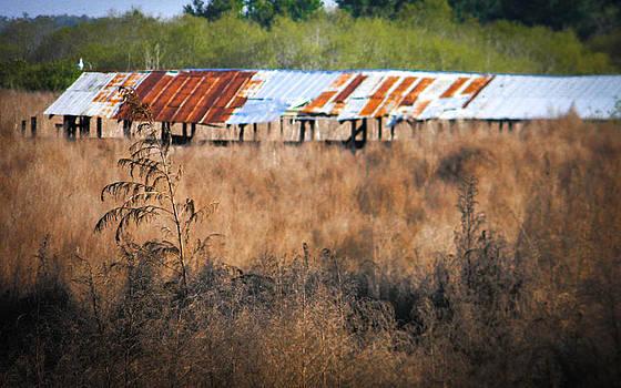 Christy Usilton - Fish Camp Closed