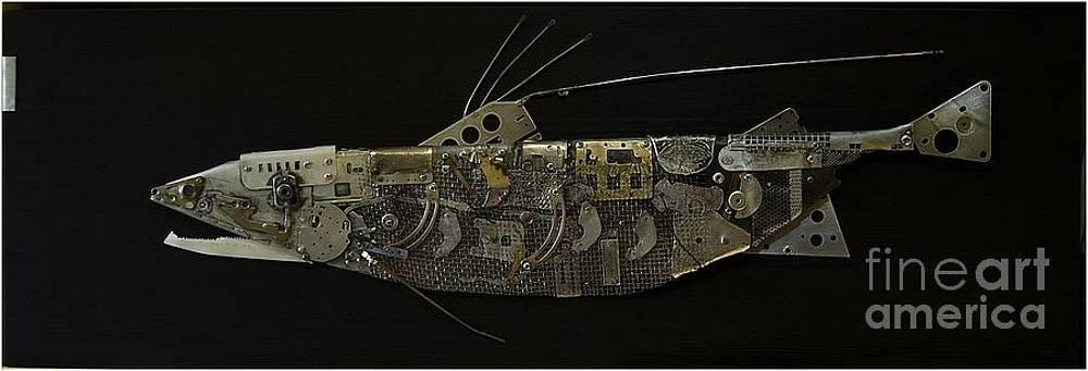Fish DX by Vladimiras Nikonovas