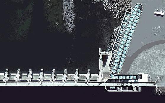 Fish Ladder by Mark Van Norman