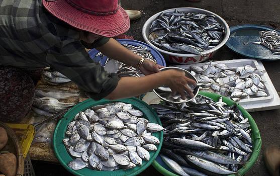 Venetia Featherstone-Witty - Fish Market in Vietnam