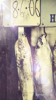 Fish Market by Marshall Bishop
