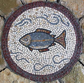 Fish by Milan Pilipovic