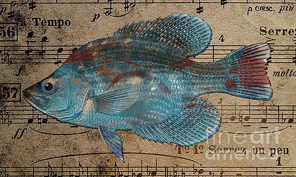 Fish n riffs by T Lang