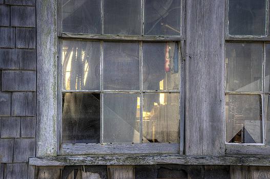 David Stone - Fish Shack Windows