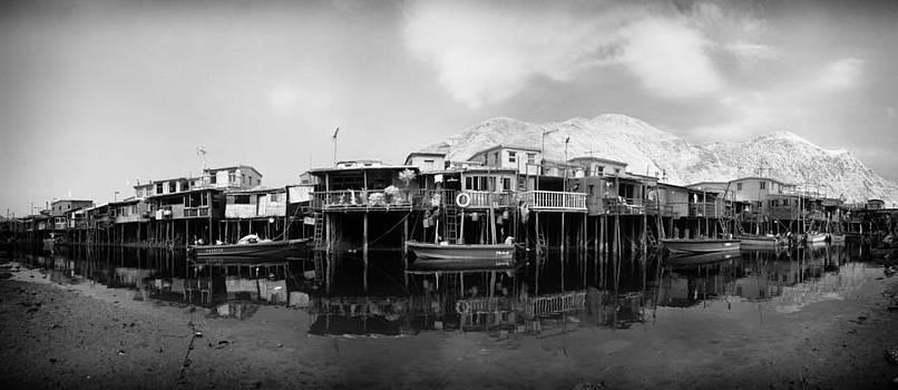 Fish Village  by Kam Chuen Dung
