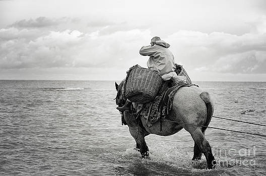 LHJB Photography - Fisherman on the back of a horse