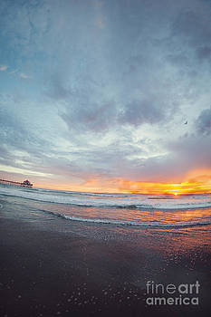 Susan Gary - FishEye Sunset With Gull
