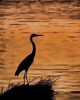Fishing at Sunset by J Michael Nettik