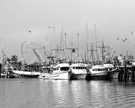 Fishing Boats by Ken Reardon