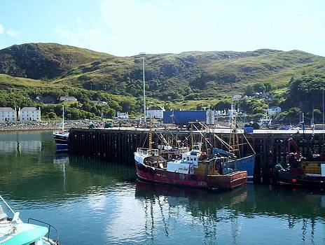 Fishing boats Mallaig Harbour Scotland by Bill Lighterness
