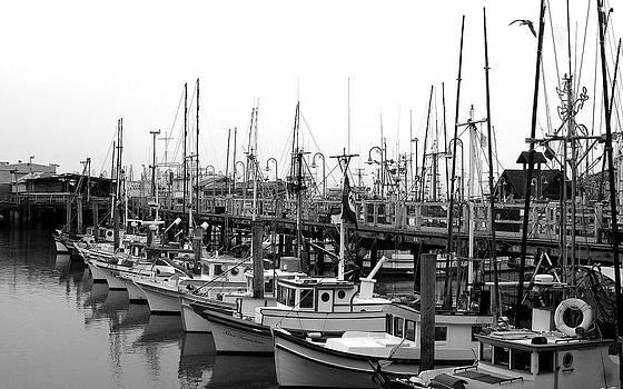 Fishing Fleet by Jack Thomas