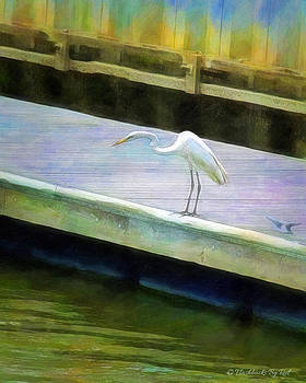 Fishing by Melody McBride