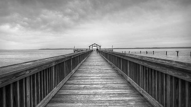 Leesylvania Pier Black and White by Michael Donahue