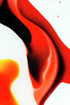 Cindi Ressler - Fishtail