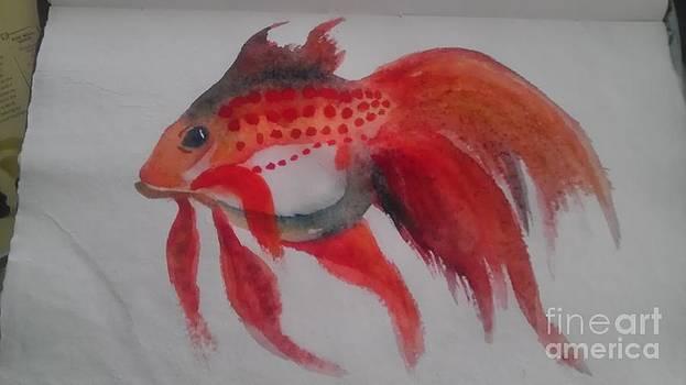 Fishy  by Laura Chorba
