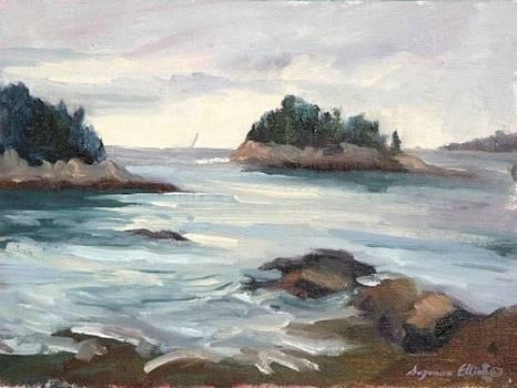 Five Islands Maine by Suzanne Elliott