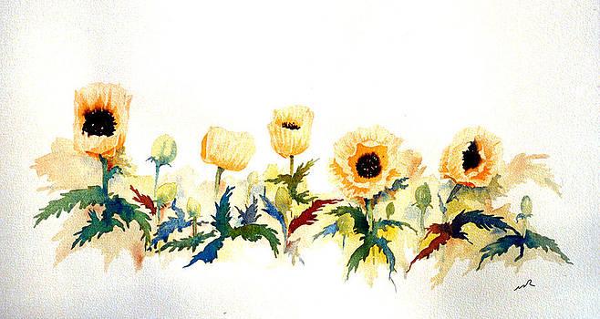 Five Poppies by William Renzulli