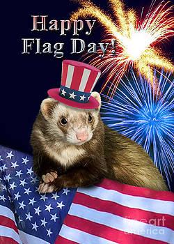 Jeanette K - Flag Day Ferret
