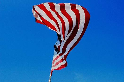 Flag by Edward Hamilton