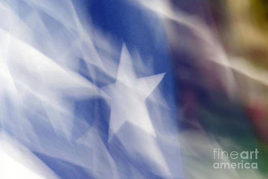 Flag in the Wind by Gerald Grow