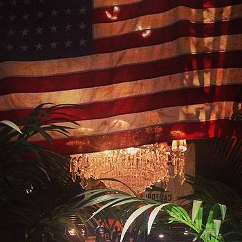#flag #lights #plant by Leanne H