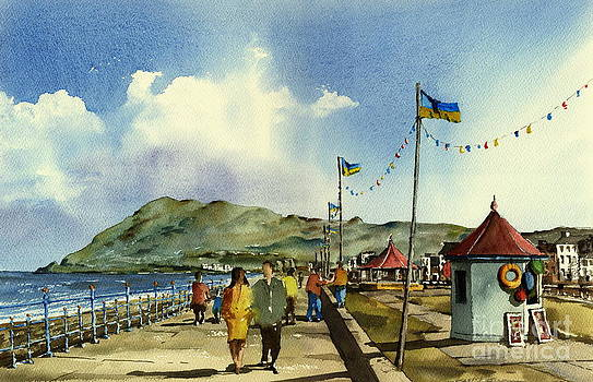 Val Byrne - Flag Poles on Bray Prom wicklow