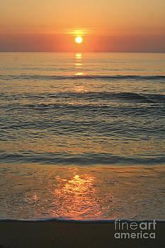 Flagler Beach Sunrise by Janis Lee Colon