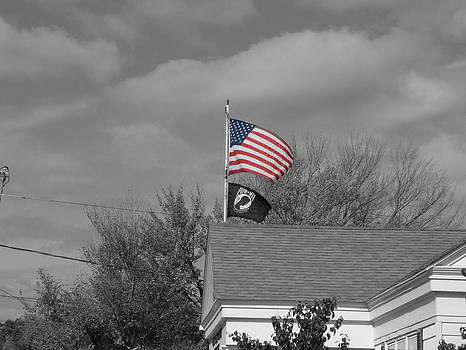 Flags Auburn Post Office by Mike McCool