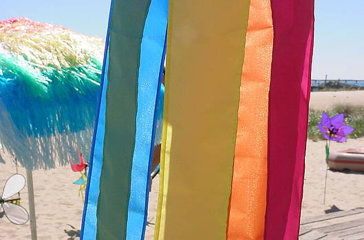 Flags in Provincetown by Mike McCool