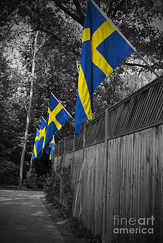 Jost Houk - Flags of Sweden