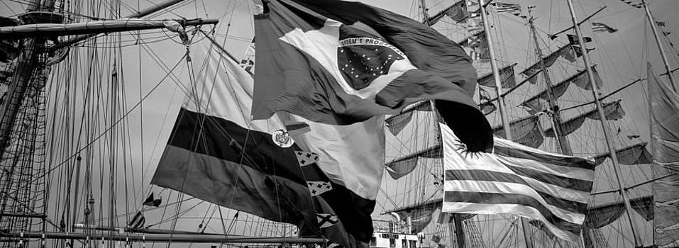 Flags by Tony Wainwright