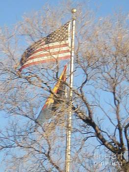 Flags USA AZ by Debbie Wells