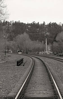 Steven Lapkin - Flagstaff Train Track