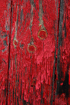 Flaking red paint on old shed. by Rob Huntley