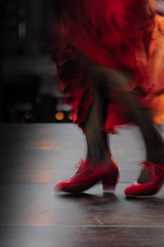 Flamenco Fire by Tetyana Kokhanets