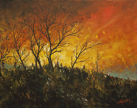 Flaming Montana Sunset by C Michael French