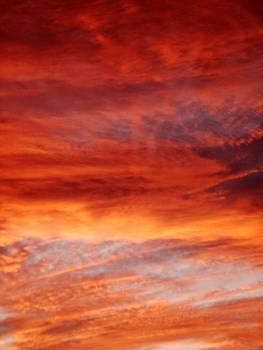 Flaming Sky by Julia  Walsh