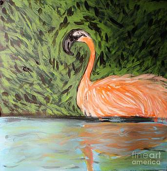 Flamingo and Reflection by Marie Bulger