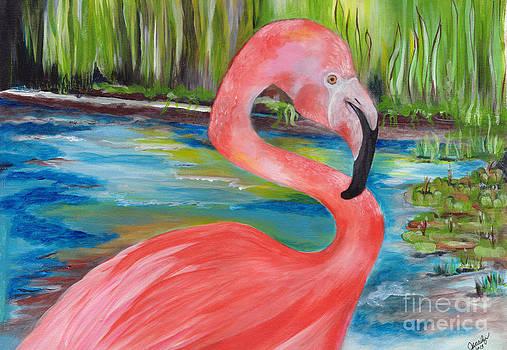 Flamingo by Jacalyn Hassler Yurchuck