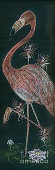 Flamingo Knees by Dawn Fairies