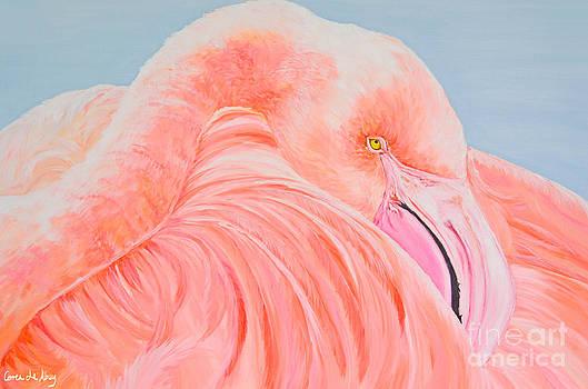 Male Flamingo by Paola Correa de Albury