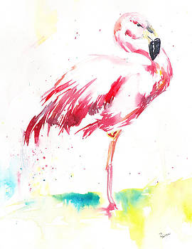 Flamingo by Rachel Dutton