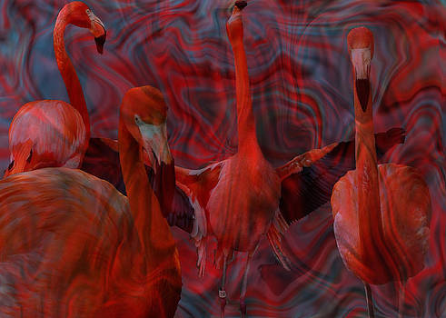 Flamingo's Dance by Cherie Haines