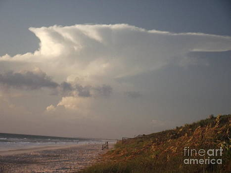 Flat top Cloud at Canaveral National Seashore by Virginia Zuelsdorf