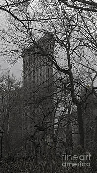 Flatiron Winter by Roy H Wagner ASC